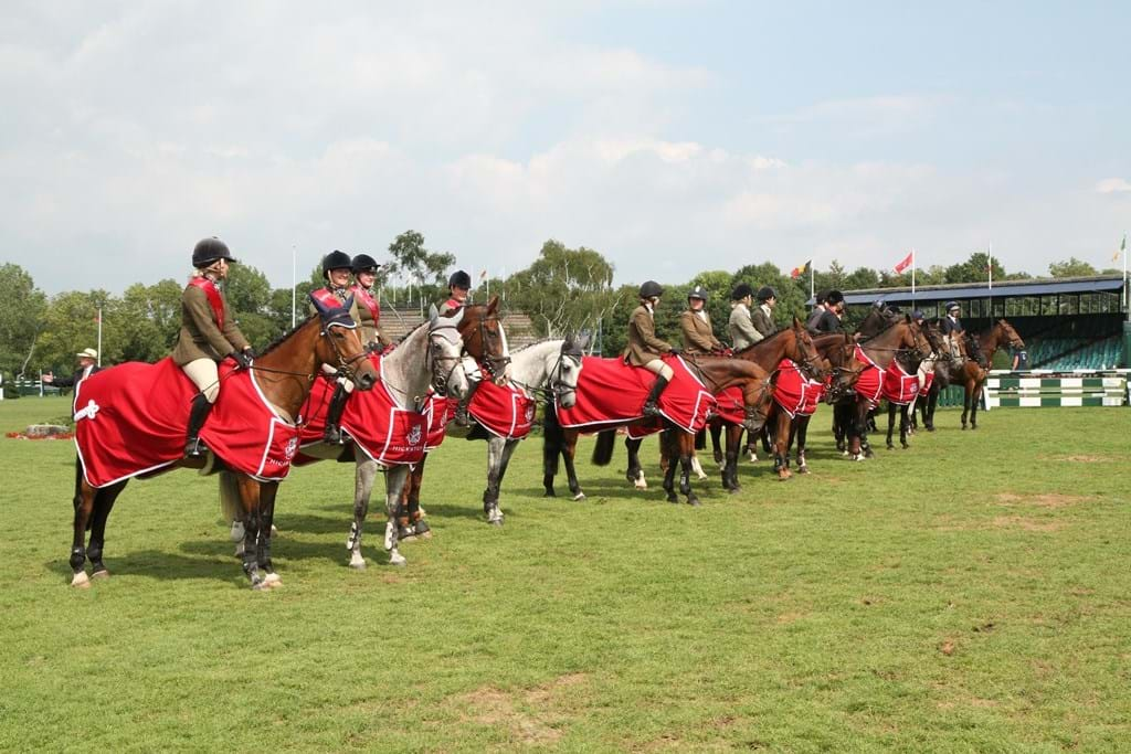 line-up-pony-clubs-c-julian-portch-copyjpg