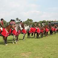 Line up pony clubs (c) Julian portch - Copy.jpg