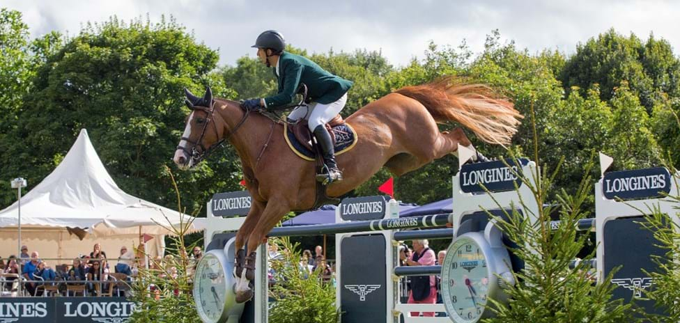 Trade Stands Hickstead : Make the most of your hickstead visit