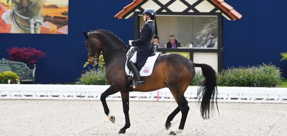dressage-pic-large-jpg